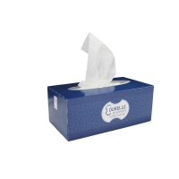 FSC Mix Durelle Premium Facial Tissues 200 sheet (32/ctn)