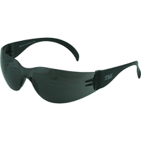 Smoke Texas Safety Anti Fog Glasses (1 pair)