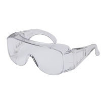Visitors Clear Safety Glasses (1/pair)